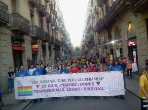 Manifestación de 28 de junio de 2013 025